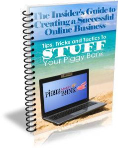InsidersGuidetoCreatingaSuccessfulOnlineBusiness-piggymakesbank-ringspiralbinder